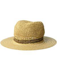 Steve Madden Panama Hat - Brown