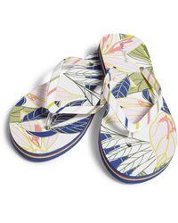 Vera Bradley Flip-flop - Multicolor