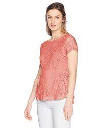 Adrianna Papell Short Sleeve Peplum Lace Blouse - Pink