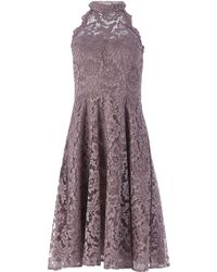 Eliza J Lace Fit And Flare Dress - Pink