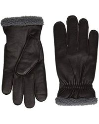 Tommy Hilfiger Leather Gloves - Brown