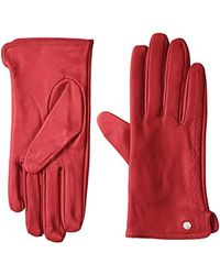 Armani Exchange | Cold Wether Gloves - Red