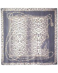 Roberto Cavalli Patterned Scarf, Black/leopard Print
