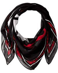 Armani Exchange | Grphic Scrf - Black