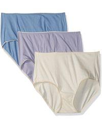 Hanes Ecosmart Brief Panty 3-pack - Multicolor