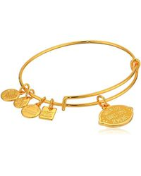 ALEX AND ANI - S Charity By Design When Life Gives You Lemons Bangle - Lyst