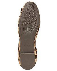 ac092f3c8e52 Cole Haan - Tali Modern Bow Ballet (ocelot) Women s Flat Shoes - Lyst