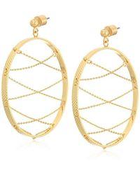 BCBGeneration - Bcbg Generation Hoop Earrings - Lyst