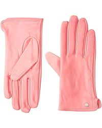 Armani Exchange | Cold Wether Gloves - Pink