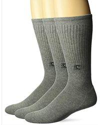 O'neill Sportswear Commons 3 Pack Crew Sock - Gray