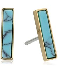 Fossil Modern Meadows Turquoise Earrings - Multicolor