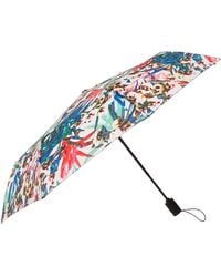 Nicole Miller Automatic Open/close Umbrella-880nm-rio - Blue
