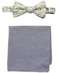 Tommy Bahama Urban Paisley Bow Tie & Solid Pocket Square Set - Yellow