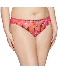 Freya Plus Size Hot House Brief - Pink