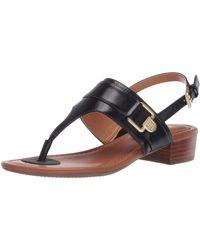 Tommy Hilfiger Block Heel Sandal Black 6.5 M Us