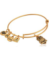 ALEX AND ANI - S Charity By Design Owl Ii Bangle - Lyst
