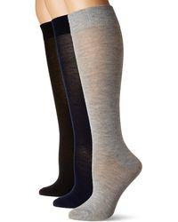 Steve Madden Legwear 3pk Solid Knee High Sm2718 - Blue