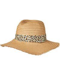 Steve Madden Panama Hat - Multicolor