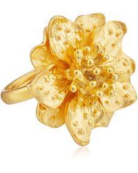 Kenneth Jay Lane Satin Gold-tone Flower Ring - Metallic