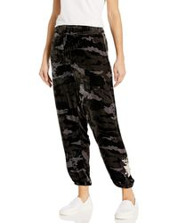 Johnny Was Velvet Jogger With Embroidery - Black