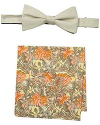 Tommy Bahama Solid Bow Tie And Jungle Pocket Square Set - Multicolor