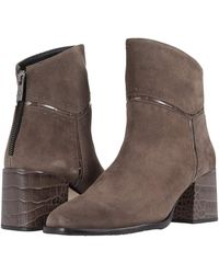 Donald J Pliner Chelsea Boot - Brown