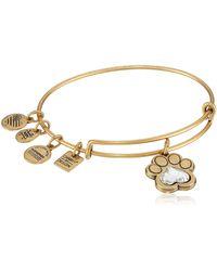 ALEX AND ANI Prints Of Love Expandable Rafaelian Gold Bangle Bracelet - Metallic