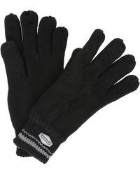 Regatta S Balton Cotton Jersey Knit Winter Walking Gloves - Black