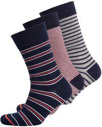 Superdry Lot de 3 paires de chaussettes en coton bio - - Medium-Large - Bleu