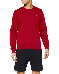 Lacoste Sweat-Shirt Homme - Rouge