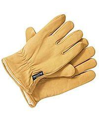 Dickies - Herren Handschuhe Handschuhe Lined Leather Gloves - Lyst