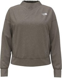 The North Face Mineral Grey Heather - Gris
