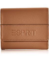 Esprit 070ea1v314 Wallet - Brown