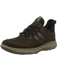 Rockport Truflex Hybrid Mid Tie Leather Combat Boots - Braun