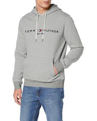 Tommy Hilfiger Core Tommy Logo Hoody Capucha - Gris