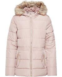 Dorothy Perkins Blush Faux Fur Hood Padded Jacket - Pink