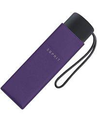 Esprit Folding Umbrella - Purple