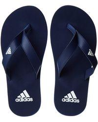 adidas Eezay Flip Flop, Chaussures de Cross Homme - Bleu