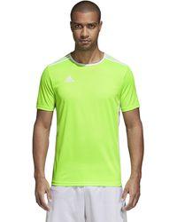adidas Soccer Entrada 18 Jersey - Verde