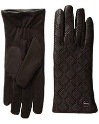 Calvin Klein - Quilted Zipper Gloves Accessory - Lyst