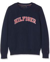 Tommy Hilfiger - Boy's Essential Hilfiger Sweater Sweatshirt - Lyst