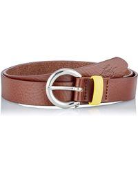 Levi's Larkspur Belt - Brown