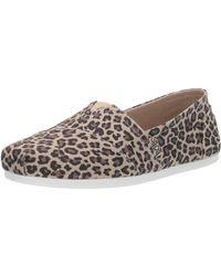 Skechers Bobs Plush-Hot Spotted. Leopard Print Slip on Ballet Flat - Multicolore