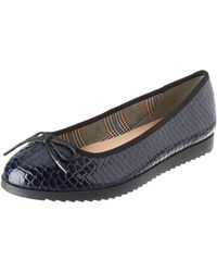 Dorothy Perkins Panther Court Shoes Closed Toe Heels - Blue