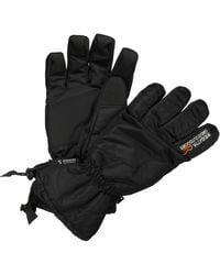 Regatta Transition Waterproof Gloves - Black