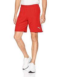 PUMA Liga Shorts - Red