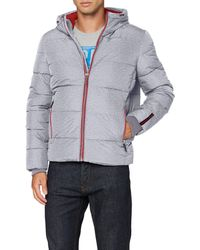 Superdry Sports Puffer - Blue