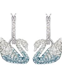 Swarovski Iconic Swan Collection Pierced Earrings - Blue