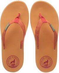Jack Wolfskin Beachster W Flip Flops - Orange
