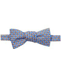 Tommy Bahama - Ombre Parrots Bow Tie - Lyst